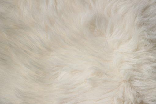 donja-HD- schapenvachtje schapenvacht-wolwit-nr-4021