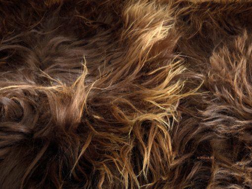 tapijt-ijsland-bruin-langhaar-trio