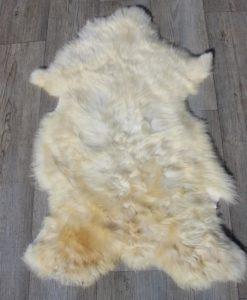 schapenvachtje-lamsvacht-nr-31