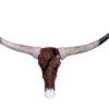 longhorn-stier-bull-met-vacht-