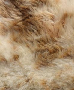 detail-donja hd schapenvacht nr 12-4 offwhite/ivoor en oranje wol