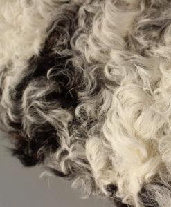 schapenvacht-kussen-room-zwart-mix-
