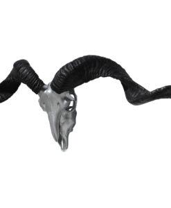 bokken-gewei-ram-schedel-.zilver