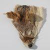 coyote-face-114-reenactment-outdoor-western-