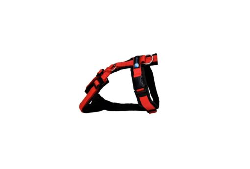 annyx-hondentuig-zwart-rood