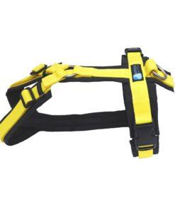 annyx-hondentuig-zwart-geel-limited-edition-