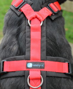 annyx-honmdentuigje-zwart-rood-het-millus-handelshuis